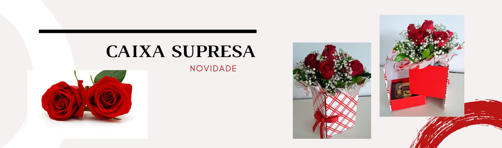 data/banner/banner-caixa-surpresa.png